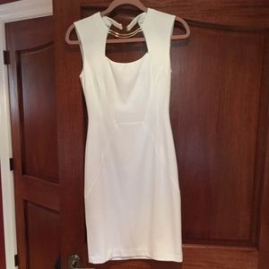 Elegant fitted BCBG dress with necklace